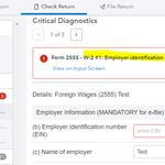 Form 2555 Dignostics.PNG