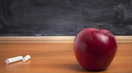 Selective focus on nearest part. Technical info: This photo was taken using a 21mp full frame Canon 5D Mark two with L lens.