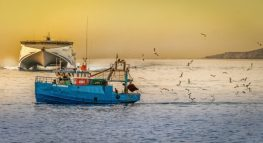 Top Tax Tips for Clients in the Commercial Fishing Industry