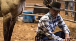 Above the Forms: The Power of Trust, I Learned From a Horse Whisperer